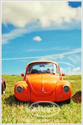 Автомобили, цветы, натюрморты и интерьеры - новые серии фотографий в нашем фотобанке