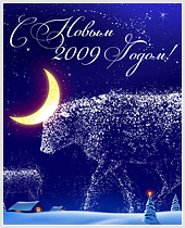 Поздравляем с наступающим 2009 годом и Рождеством!