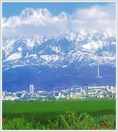Маркетинговое исследование рынка туризма Казахстана