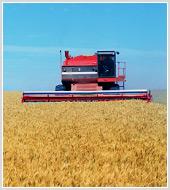 Анализ внешней торговли (импорт/ экспорт) сельскохозяйственной техникой