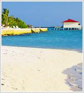 """Обновлен раздел """"Природа"""" . Сформирована фотоподборка Мальдивы"""