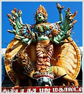 """Обновлены разделы """"Интерьер"""", """"Природа, """"Город, архитектура"""", сформирована фотоподборка """"Шри-Ланка"""""""