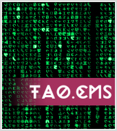 Платформа TAO.CMS/CMF стала общедоступной